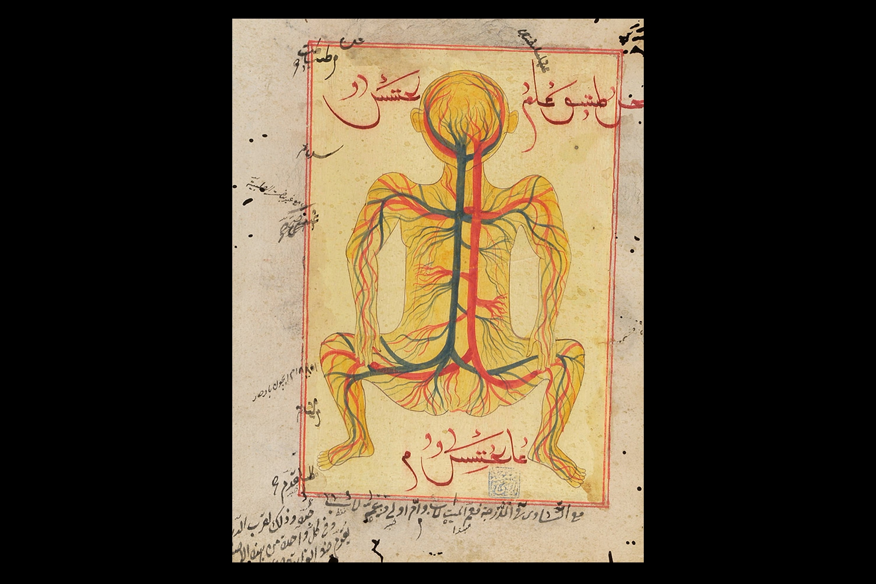 "A fake anatomical diagram with non-sensical, Arabic-like script, supposedly depicting an Islamic model of the veins and arteries of the body. Photo courtesy of the Wellcome Collection (from ""Forging Islamic science"" by Nir Shafir)"